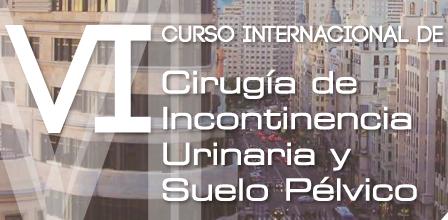 VI Curso Internacional de Cirugía de Incontinencia Urinaria y Suelo Pélvico